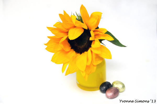 The yellow vase #12