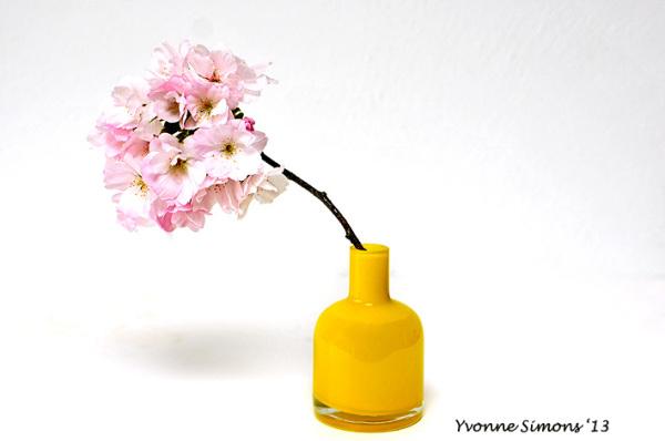 The yellow vase #16