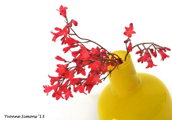 The yellow vase #20