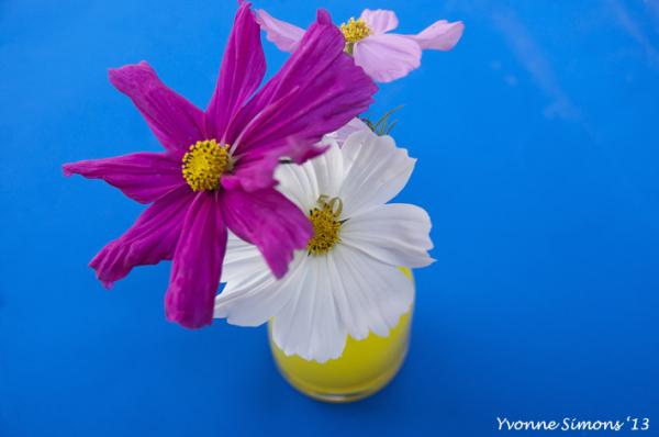 The yellow vase #28