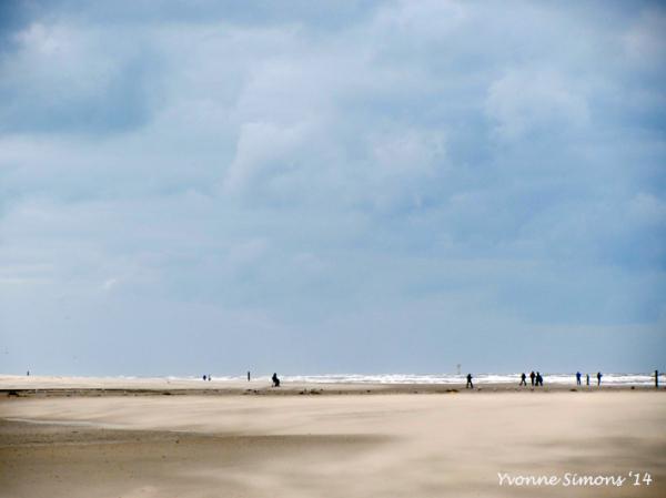The Wadden Sea 2
