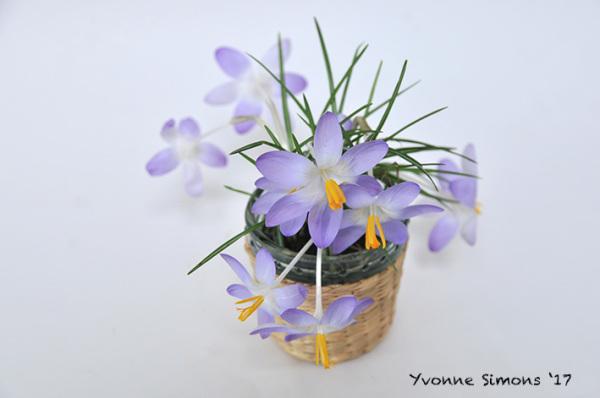 a little spring