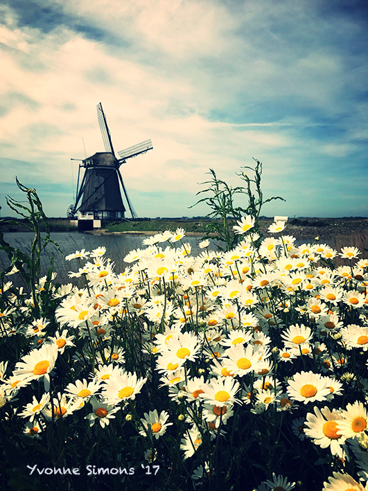 Lente op Texel