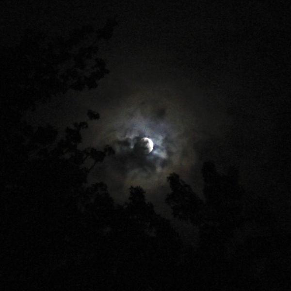Playful moon