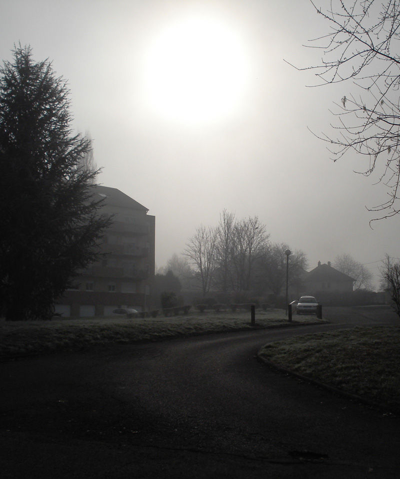 brume froide
