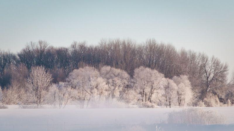 A sunny snowy morning