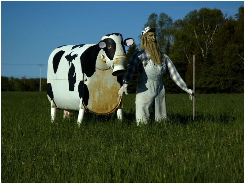 Farmer and His Cow