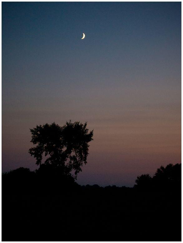 Cresent Moon at Dusk