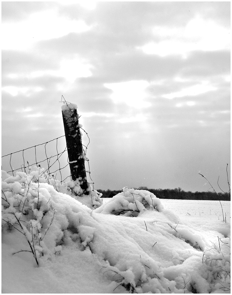Snow and Fence Post