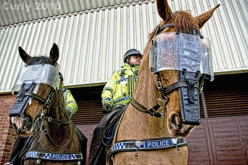 Police horses Sunderland Stadium of Light