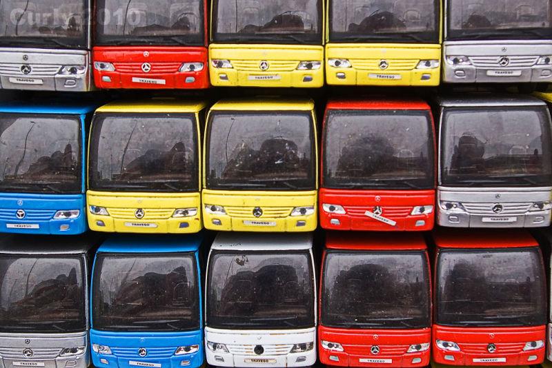 Buses, Tyne Tees Run 2010