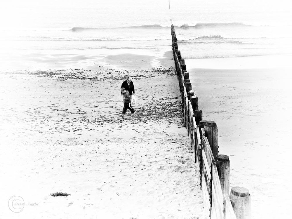 collecting shells on Blyth Beach, Northumberland