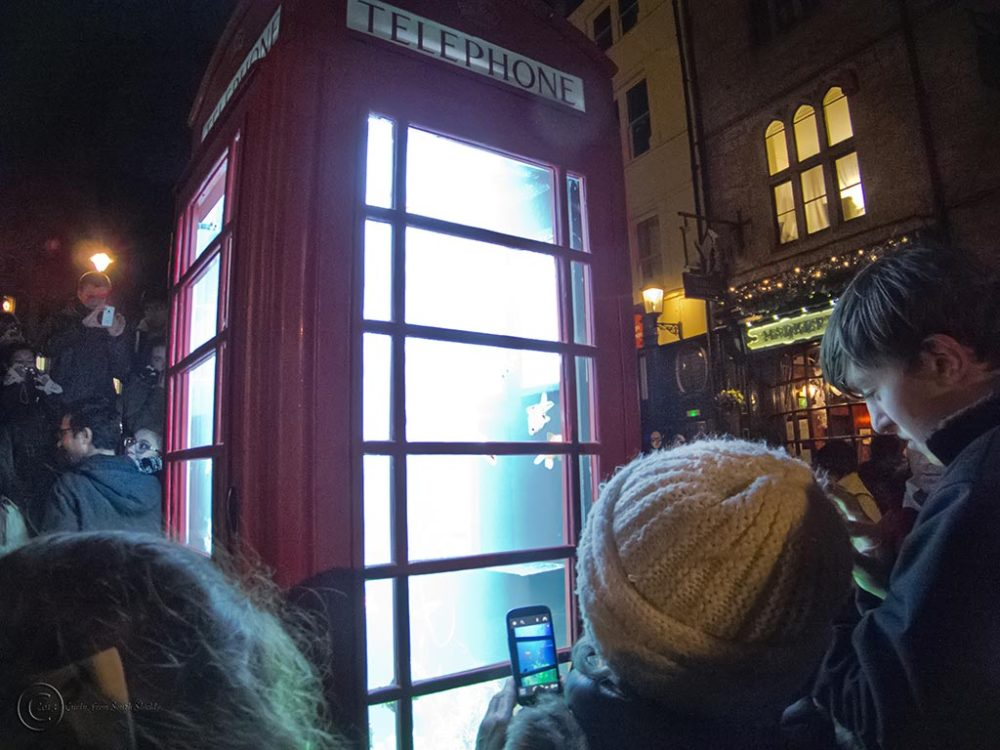Lumiere Durham 2013 telephone box