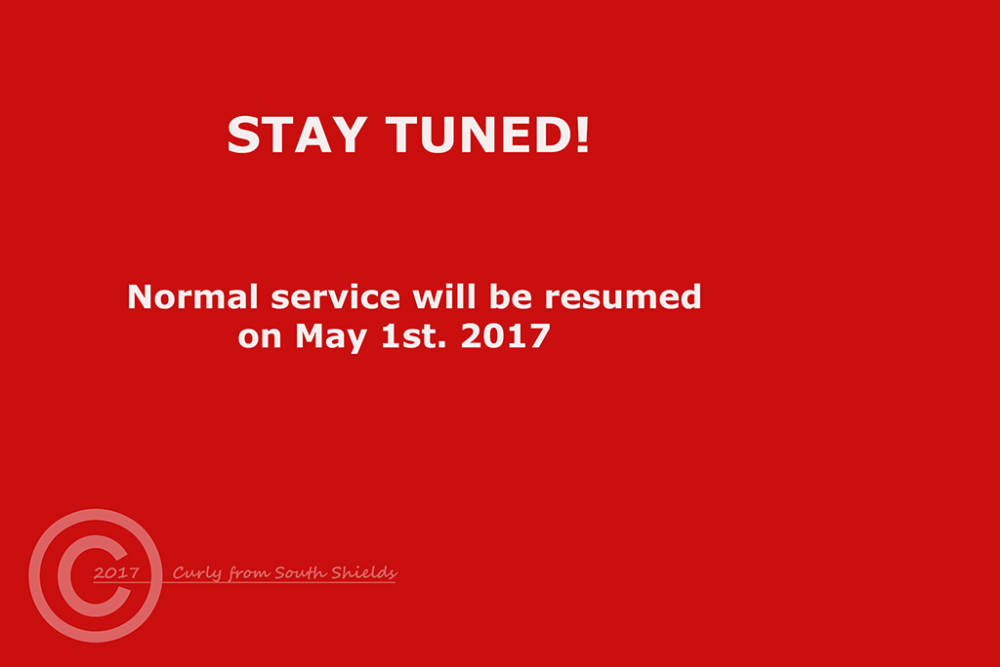 Curly will return on 1st. May 2017