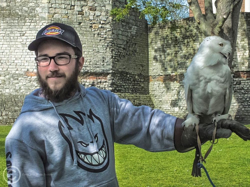 """Junior"" in York with an owl."