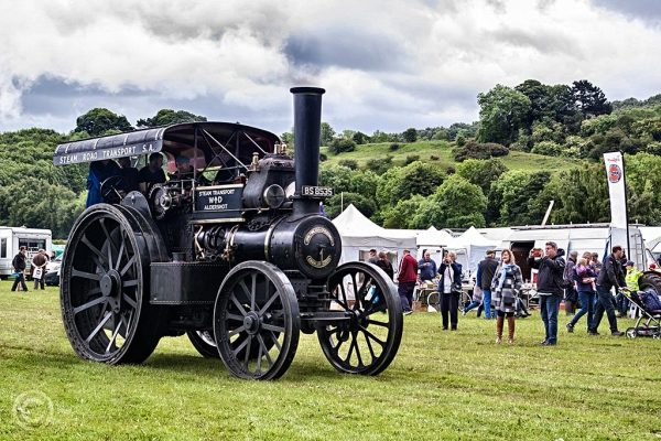 Steam traction rally Corbridge 2017