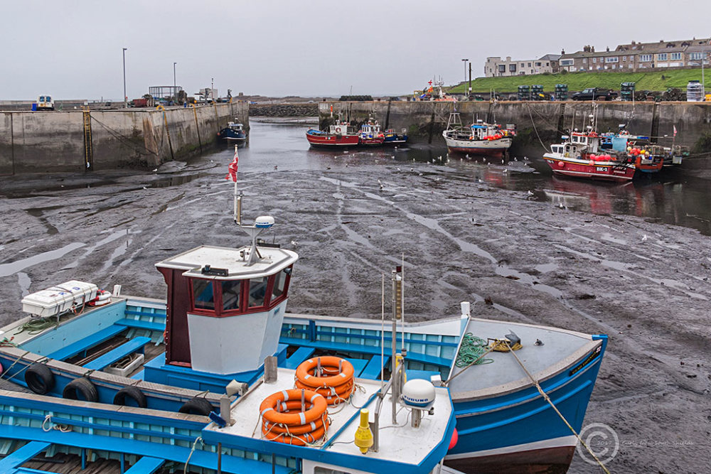 Seahouses Harbour, Northumberland