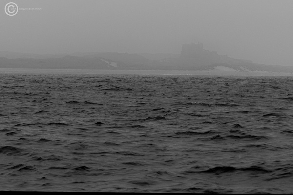 Bamburgh Castle in the fog, Northumberland
