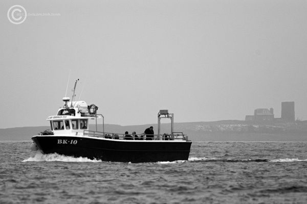 Boat returning from the Farne Islands
