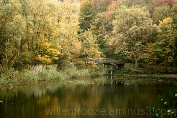 Fall 2010 in the Netherlands