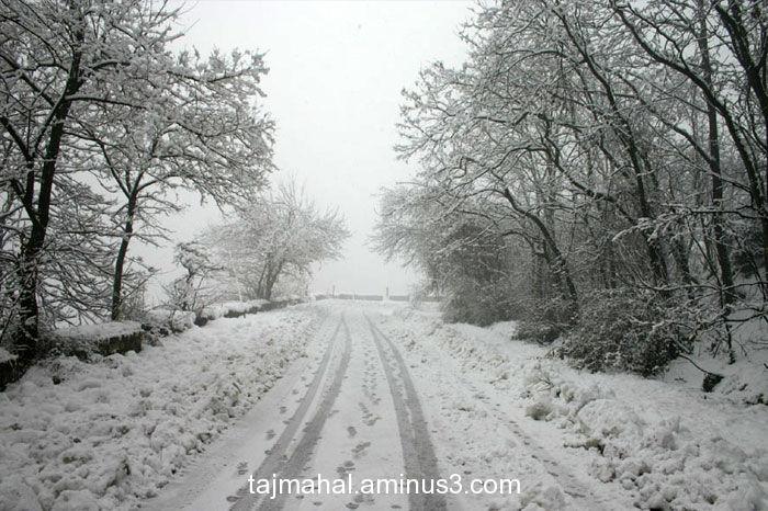 Srinagar Snowfall