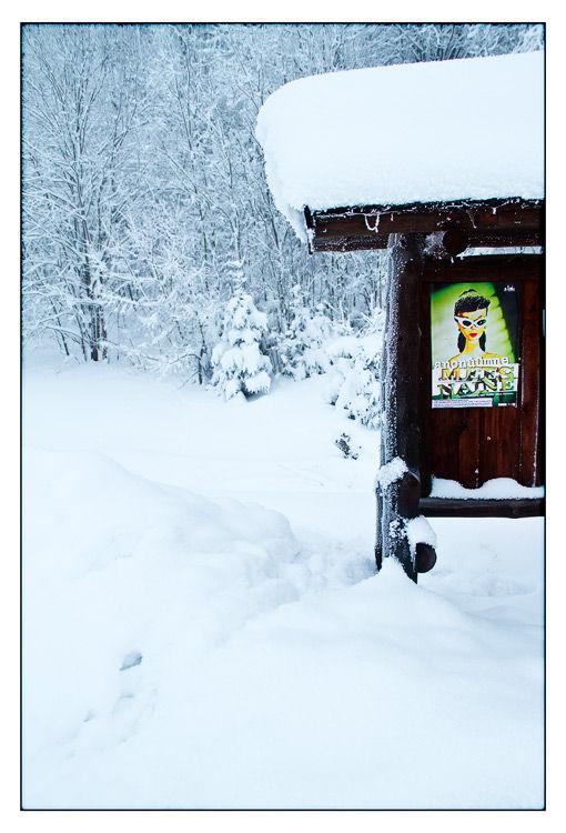 postcards from eesti (VII)