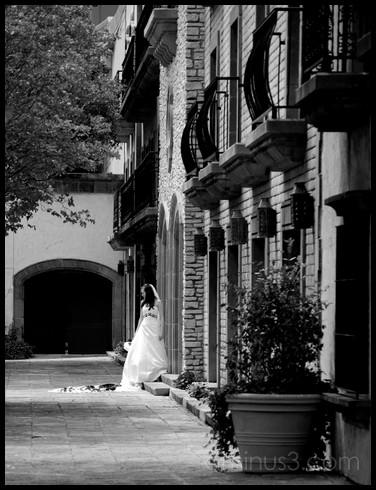 Woman posing for a wedding photo