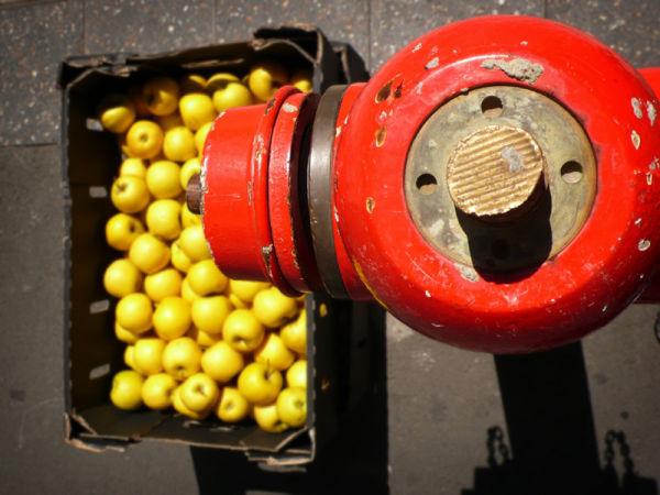 Tap hydrant box apples yellow
