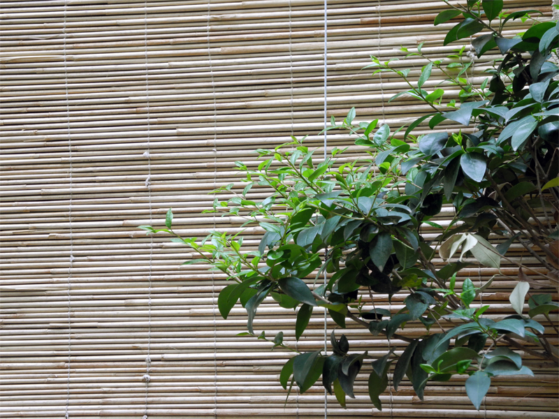 straw curtain