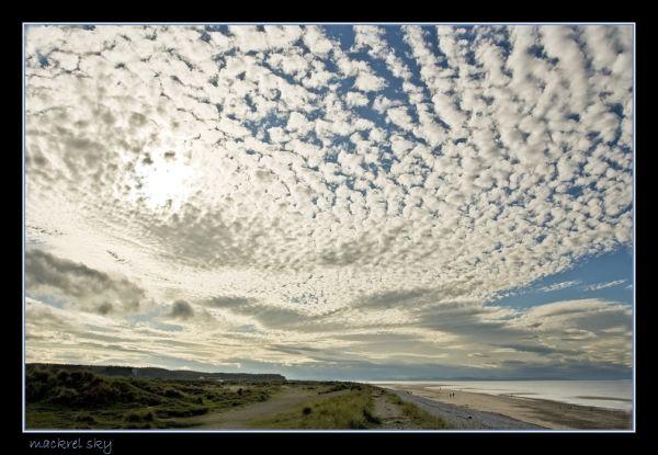Mackrel skye