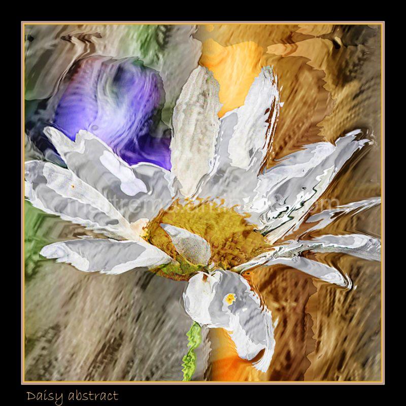 Daisy abstract!