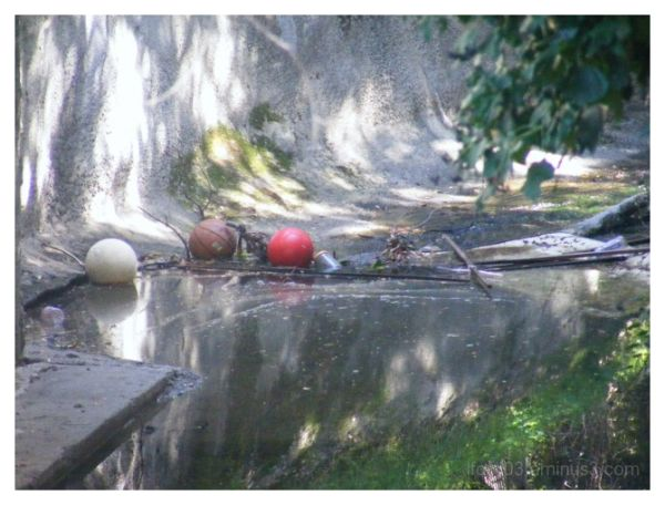 Balls in the Creek