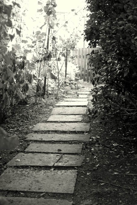 trouvez la voie...