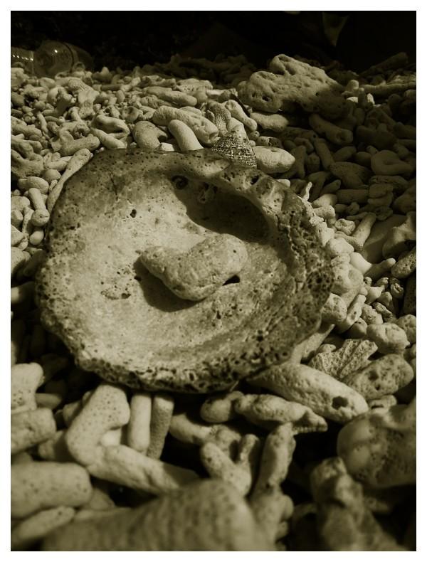 (Stone) Heart on a platter