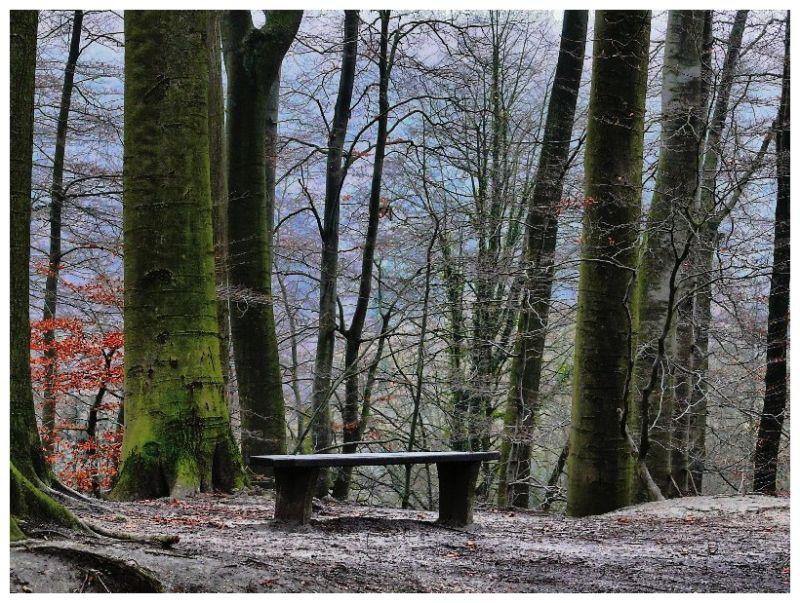 Un endroit pour penser...A place to think…