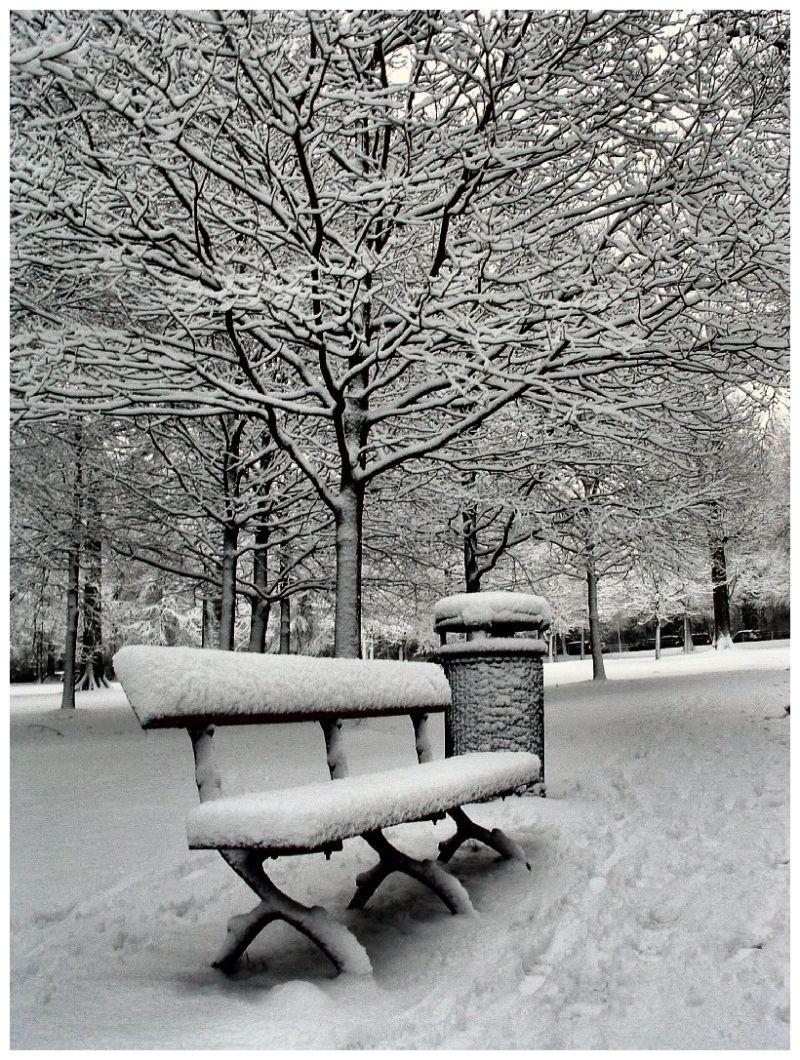 Neige Snow Banc
