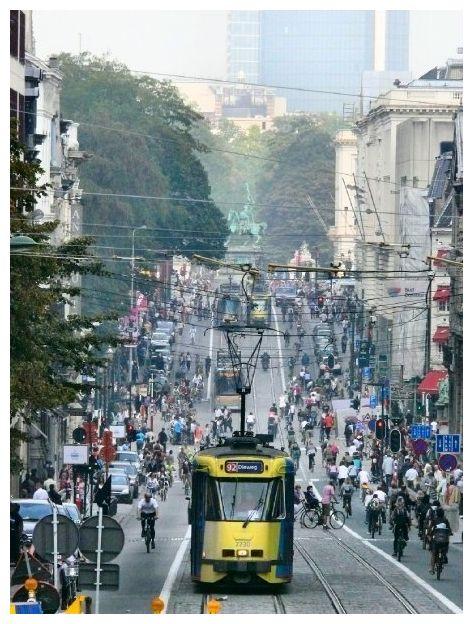 Rue de la Régence, à Bruxelles, dimanche sans auto