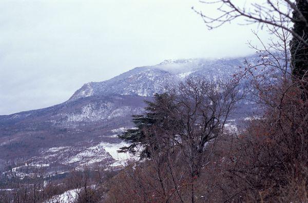 Crimea, January 2009
