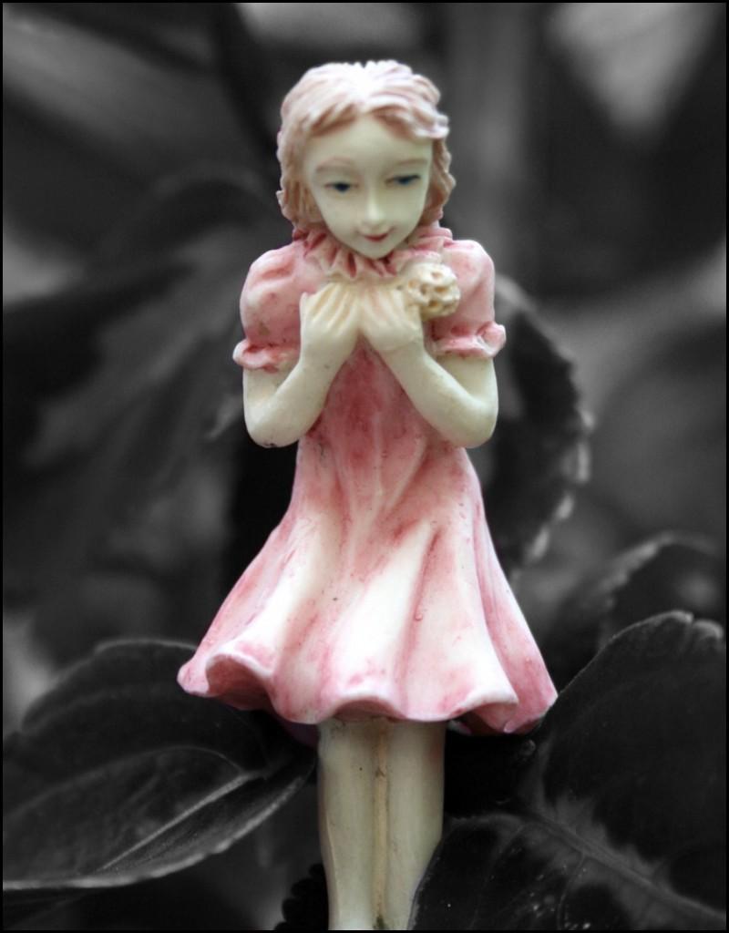 Angel of my garden