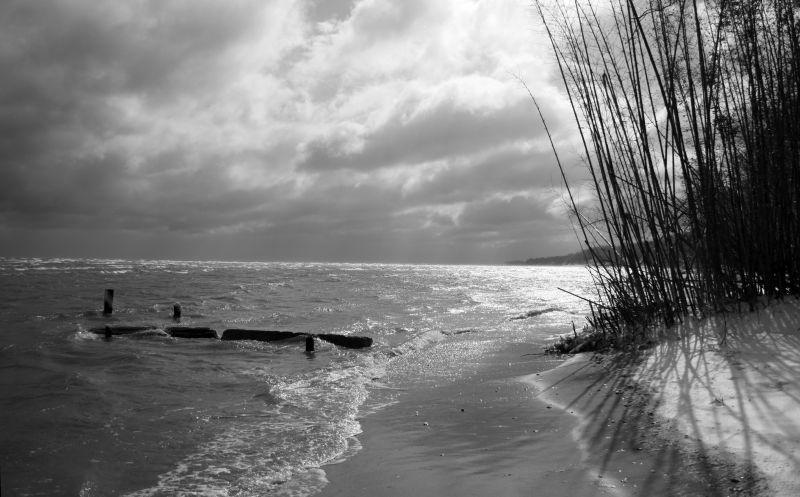 Cold Sunny Beach
