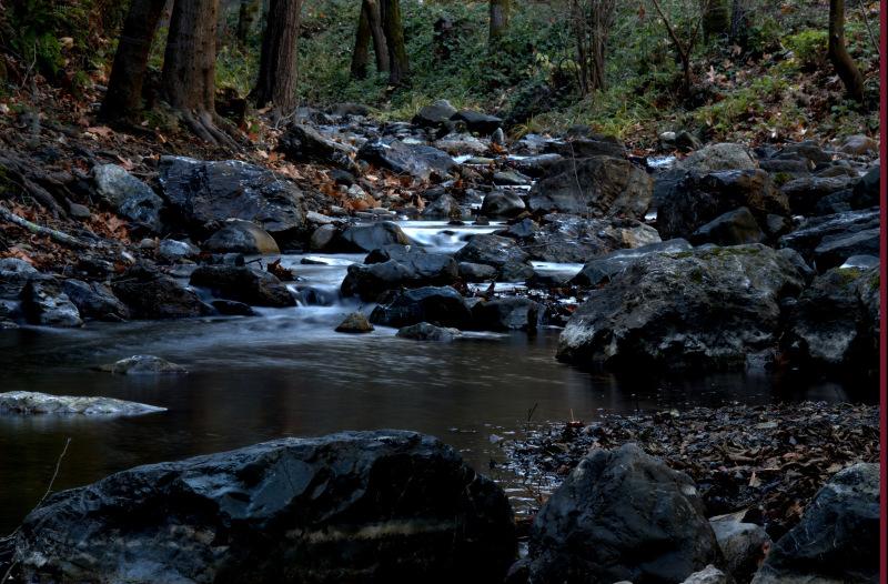 A creek near Steven