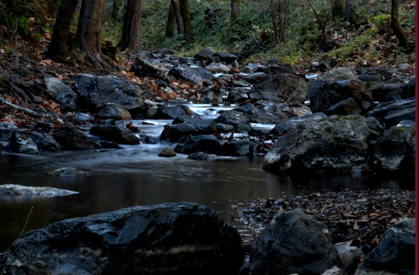 A creek near Steven's creek reservoir