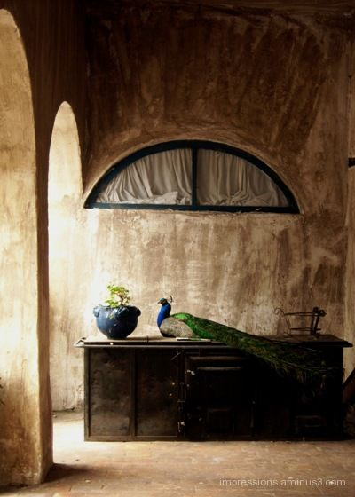 scene in a 300 year old Hacienda,...