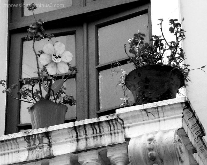 Looking up Colonial balconies 1