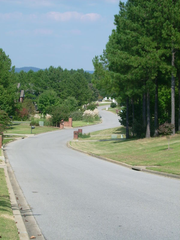 Background Included (Winding Road)