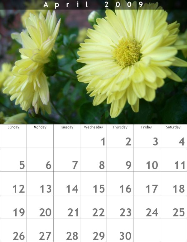 Calendar (Yellow Flowers: April)