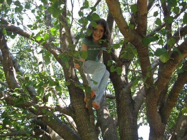 Gabriella Climbs
