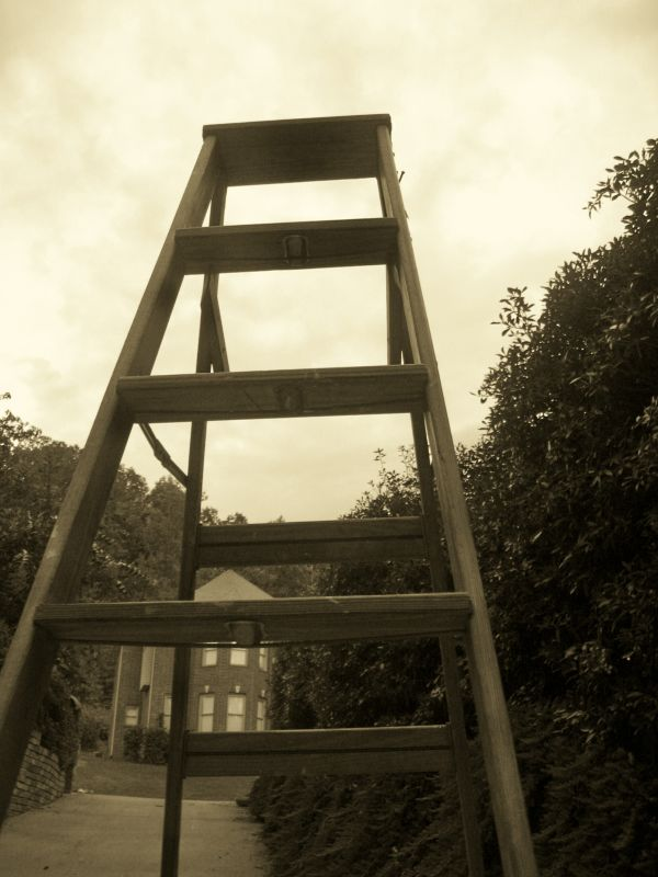 Lonely Ladder