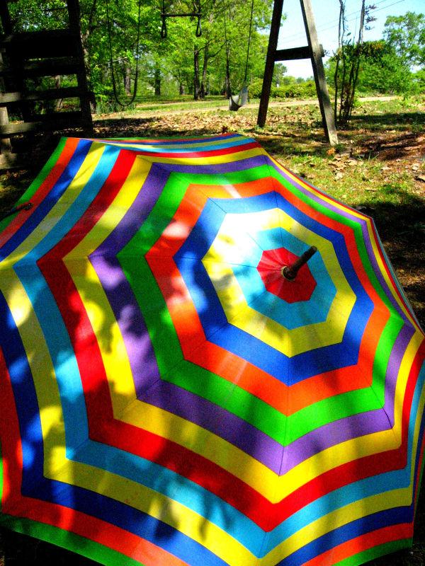 Colorful Umbrella in a Colorful World