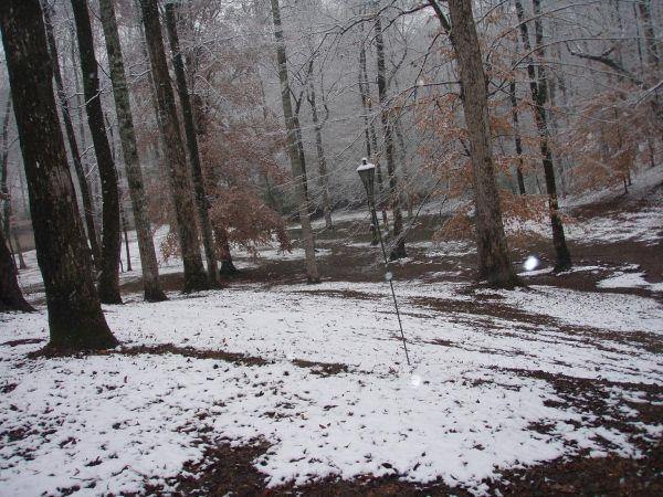 the winter snow